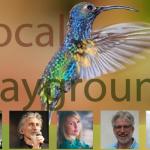 Playground 600×400 (Vocal Playground – Live stream concert)